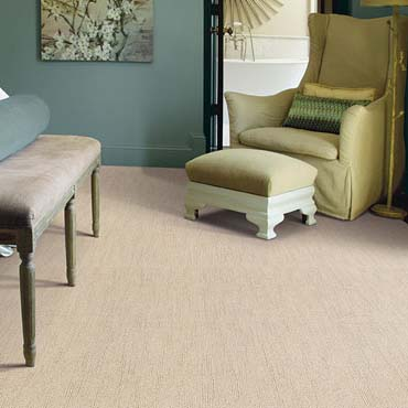 Caress Carpet by Shaw | Waycross, GA